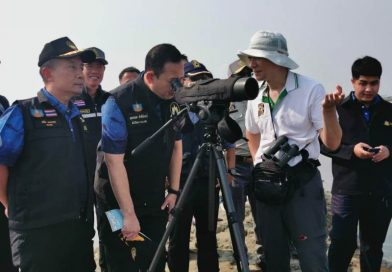 ที่ปรึกษา รมว.ทส. ลงพื้นที่สำรวจนกชายเลนปากช้อน เพชรบุรี